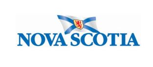 Logo NS flag colour